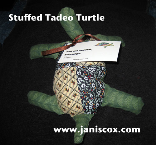 Finished Tadeo Turtle